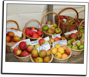 apples2_1